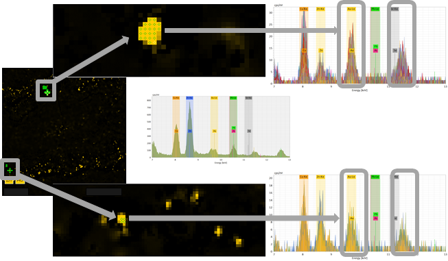 Fig. 2: SEM-XRF elemental intensity maps with overlapping Au and Zn lines.