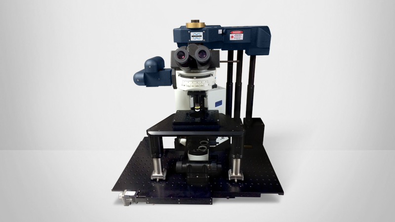 Ultima In Vitro Multiphoton Microscope