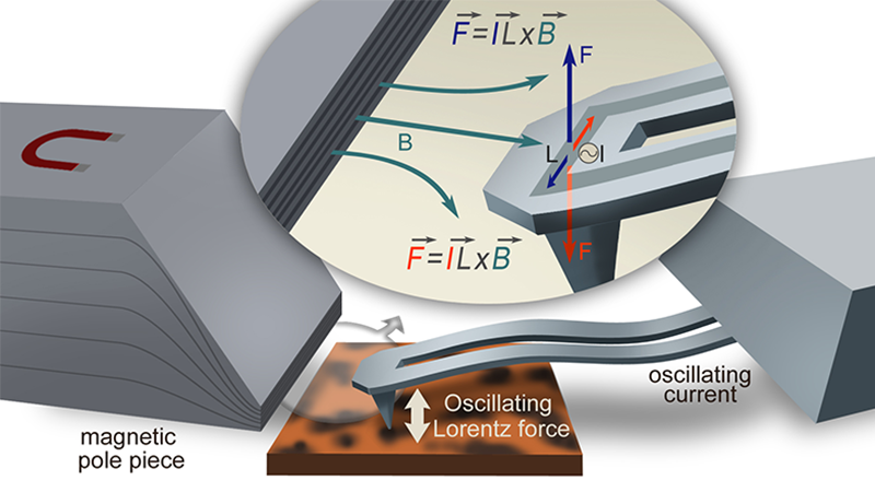 The Lorentz Contact Resonance (LCR) imaging mode further enhances the capabilities of the AFM and nanoIR systems.