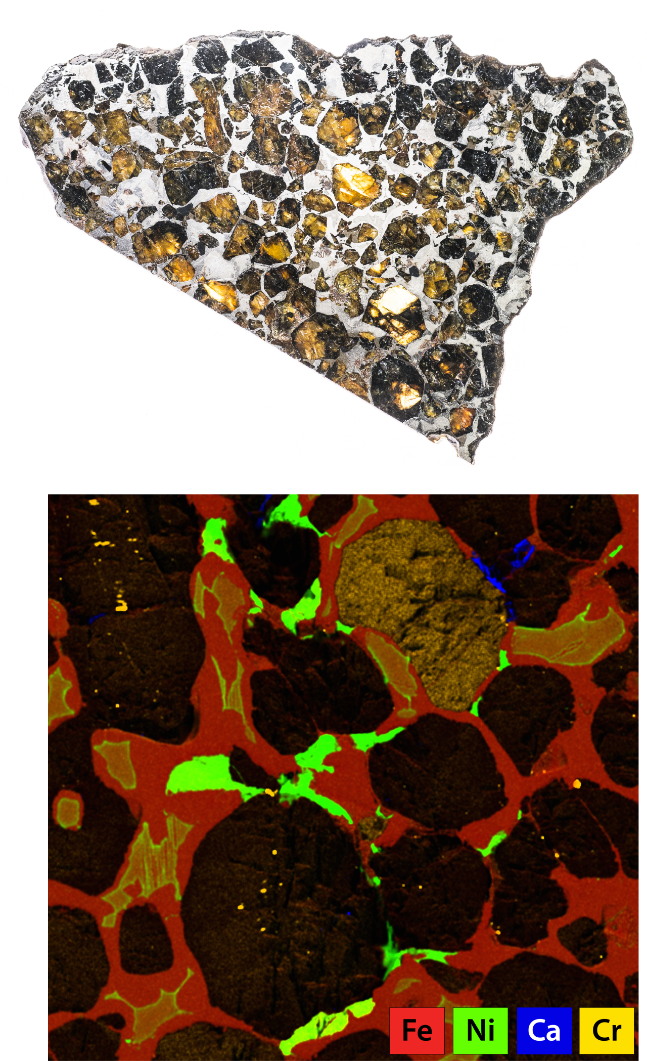 Polished surface of a pallasite