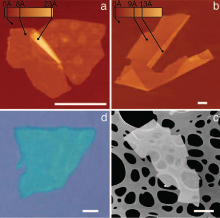 TappingMode images of NbSe2 (a) and Graphene (b) by the Graphene Nobel Prize recipient, using a Bruker MultiMode