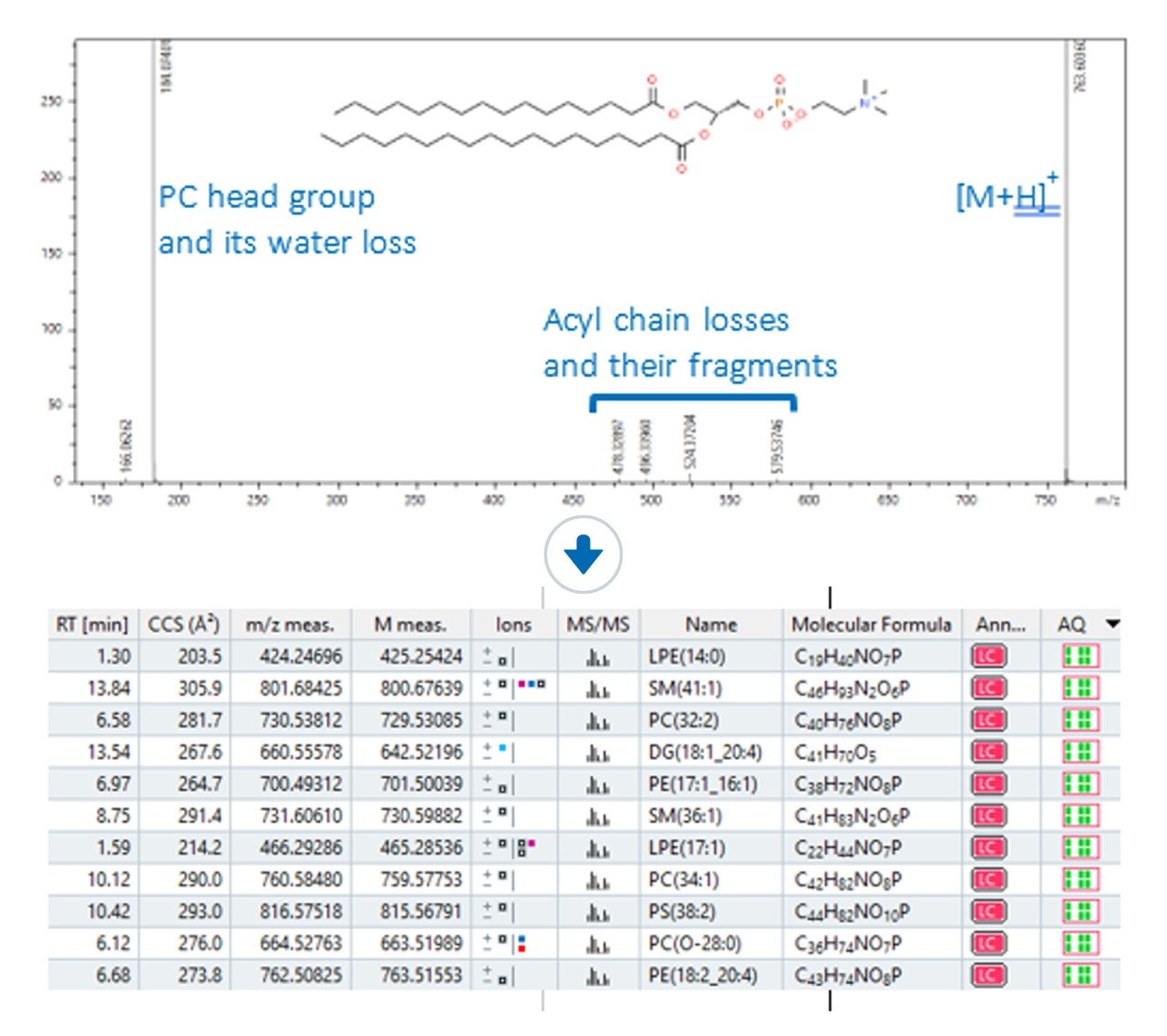 Lipid Class (LC) annotation tool