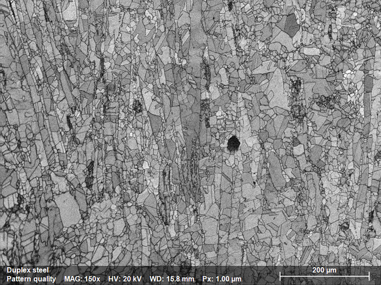 Fig. 1.1: Pattern Quality Map depicting the microstructure of a stainless steel sample; map was acquired using e-Flash XS EBSD detector mounted on JSM IT200 SEM.