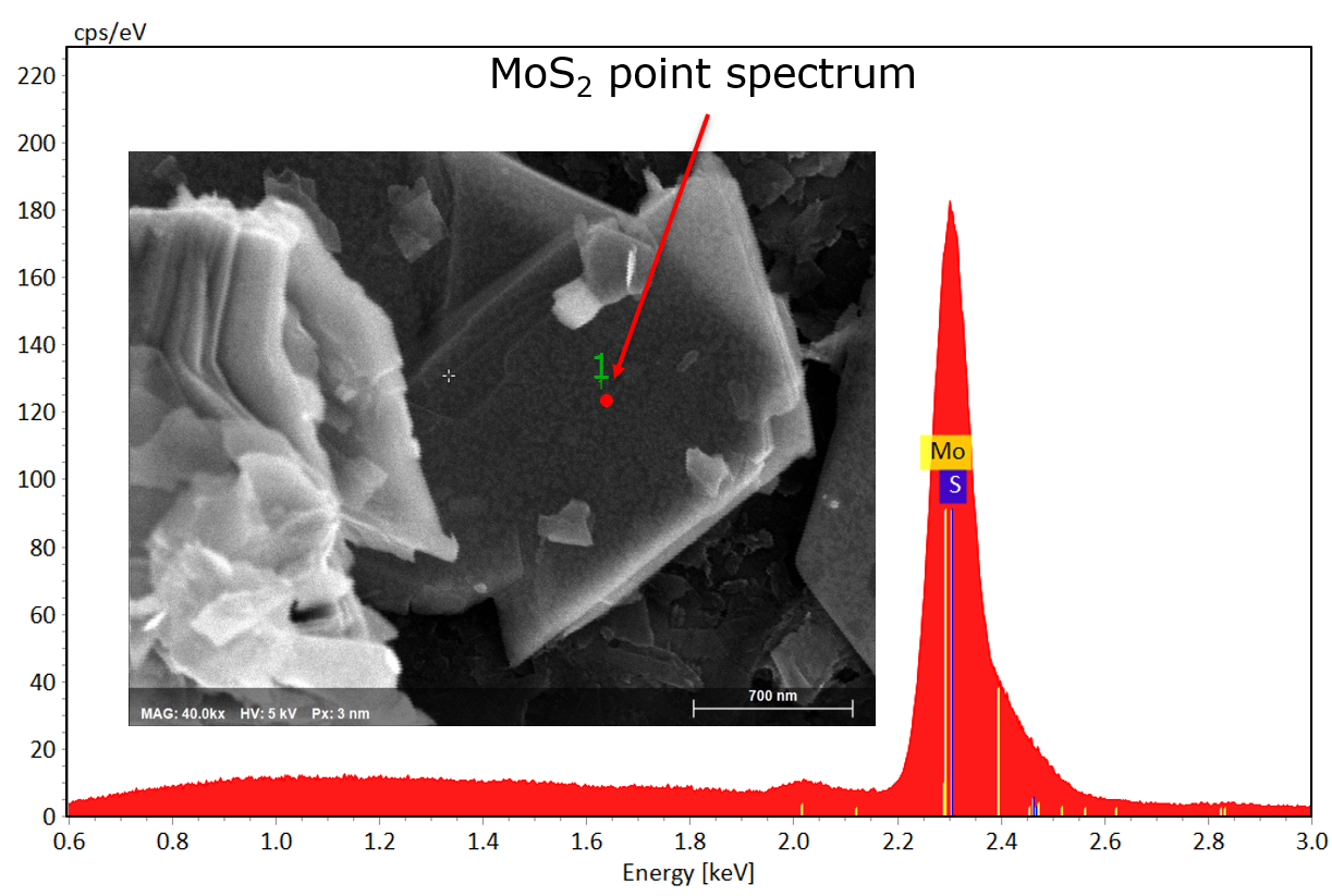 SEM image and point spectra of MoS2