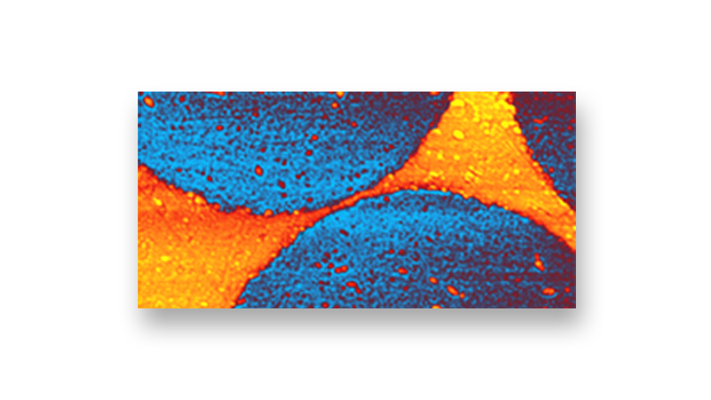 nanoIR - Nanoscale Thermal Analysis