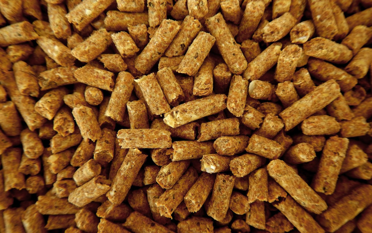 Feed & Ingredients   Bruker