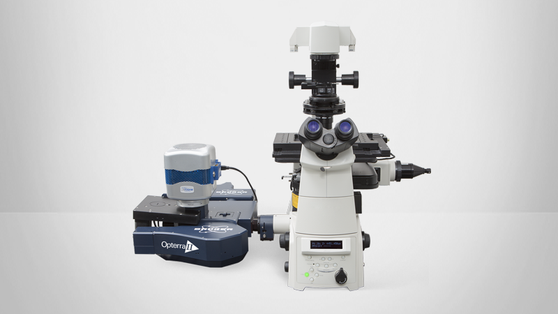4D Fluorescence Confocal Microscope for Live-Cell Imaging
