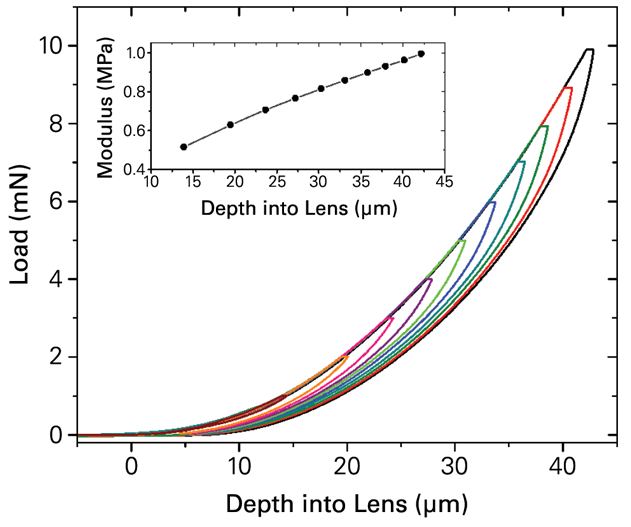 HEMA-Based Contact Lens Load Versus Displacement