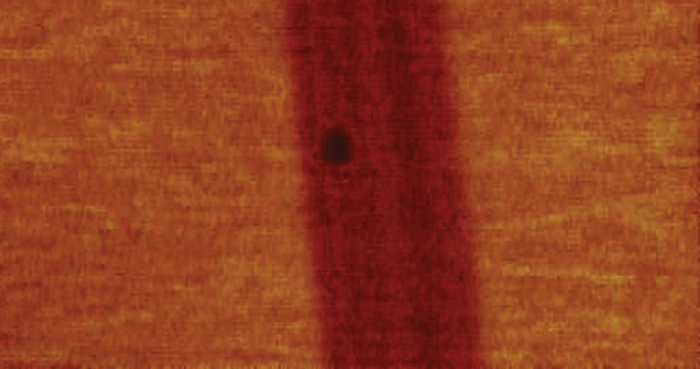 Scanning Thermal Microscopy (SThM)